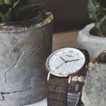 海外有名人愛用のウッド腕時計 WEWOOD/ウィーウッド